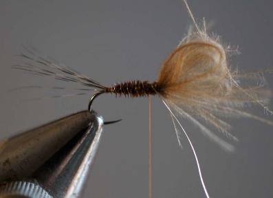 Pheasant loop cdc mosca club vallesina for Avvolgere le planimetrie del portico