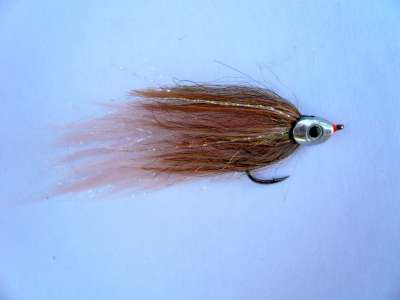 Gaja's Fish Skull Streamer 1